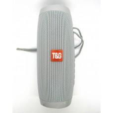 Колонка JBL STEREO BT SPEAKER TG-157 (gray)